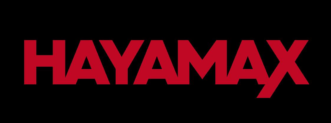 Blog Hayamax